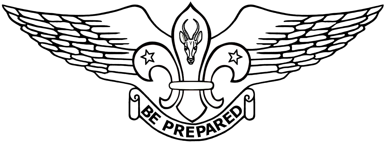 9th Pretoria (Irene) Air Scout Group